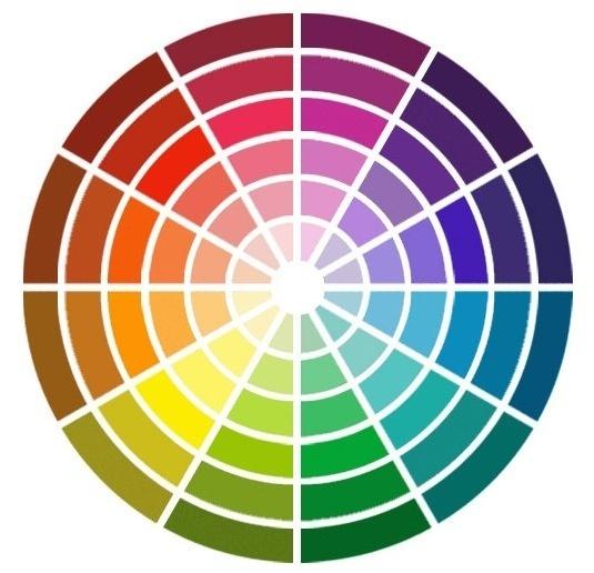 cerle colorimétrique Laure derrey conseil en image