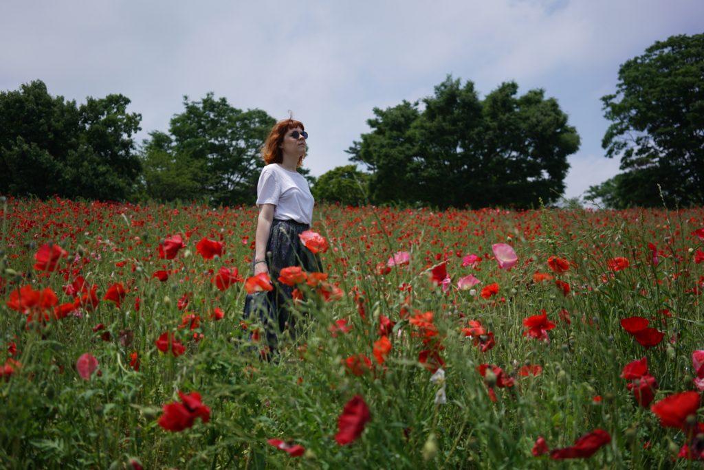 poppy field hylla tokyo coquelicot